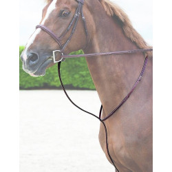 Martingale fixe Dy'on (Hunter collection)