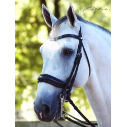 Bride Dy'on muserolle large (Dressage collection plat)