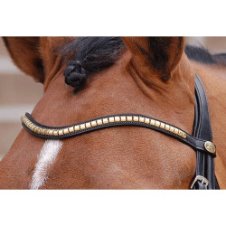 "Frontal V Clincher ""Dressage Collection"" Dy'on"