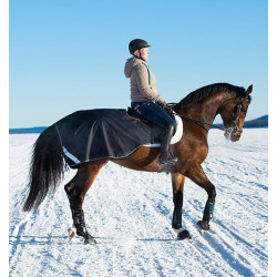 Couvre reins cheval Amigo 3 en 1 Competition Sheet Horseware