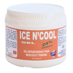 Ice n'cool gel rekor