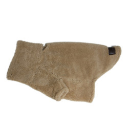 Pull pour chien Teddy Kentucky