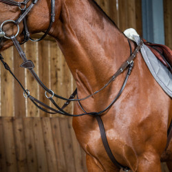 Martingale à anneaux Working by Dy'on